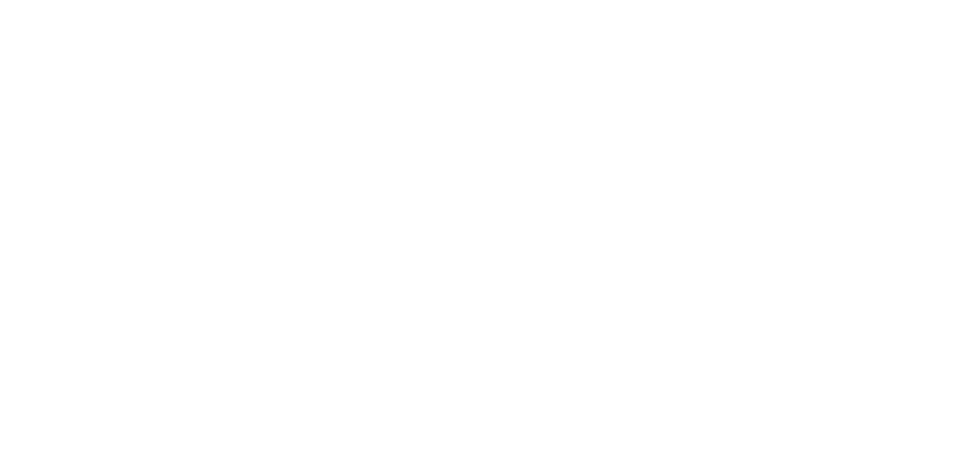 Monkey, Agencia de Marketing Digital especialista en PYMES
